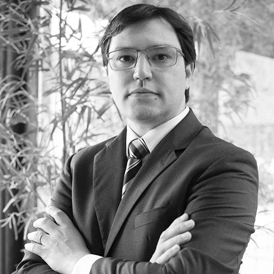 Vinicius Teodoro de Oliveira